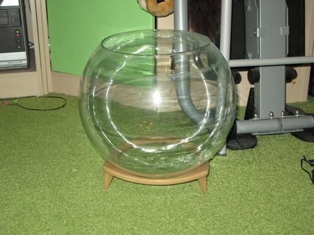 Круглый аквариум своими руками